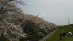 Photo_18-04-03-15-27-58.746